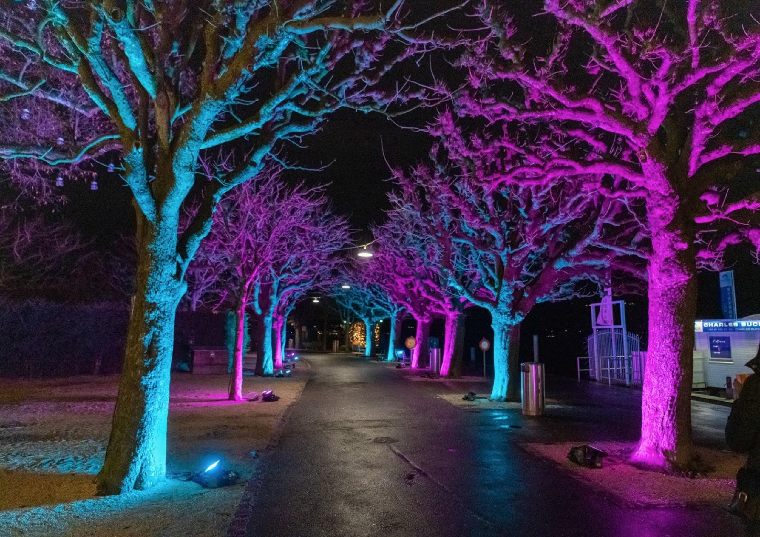 Lilu - Licht Festival Luzern